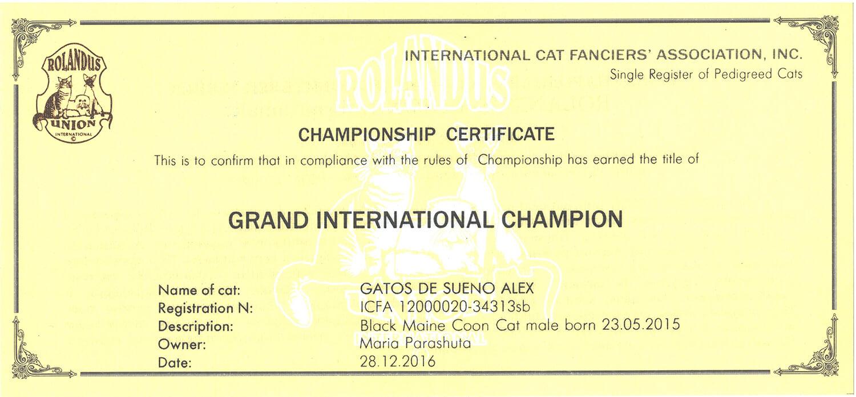 Титульный сертификат «Grand International Champion»