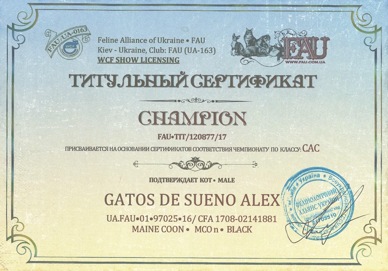 Титульный сертификат «Чемпион»
